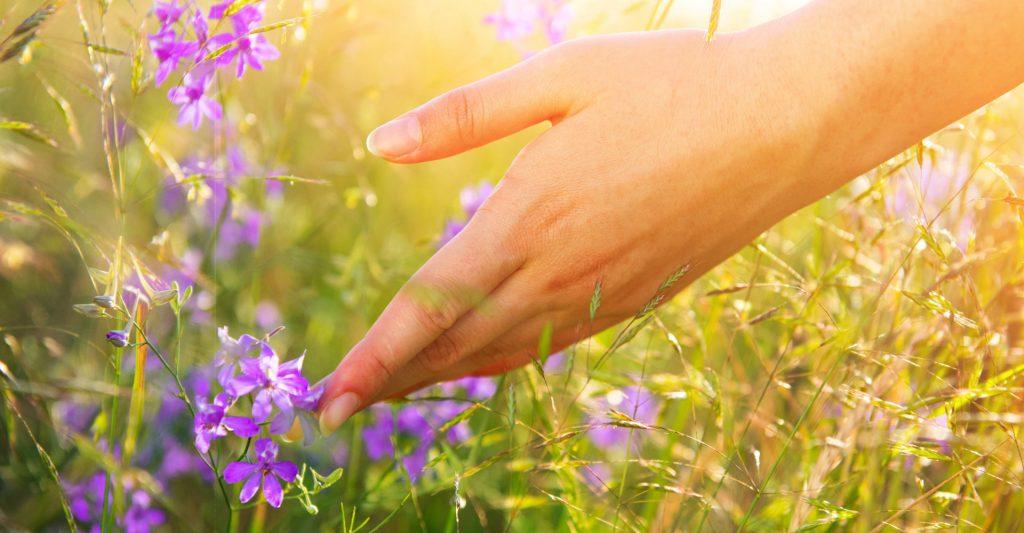 tratar alergias com Zyrtec