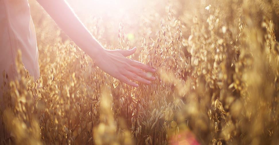 Mitos sobre as alergias
